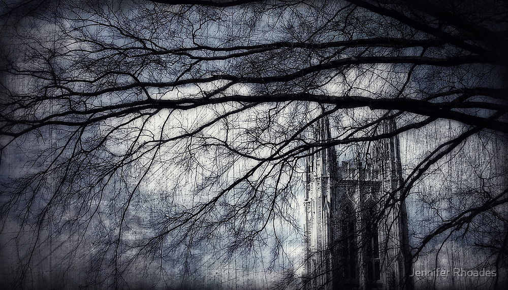 Gotham Duke by Jennifer Rhoades