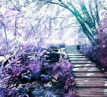 enchanting path by maydaze