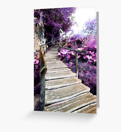 wisteria stairs Greeting Card