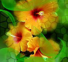 Breeze of Hawai  by Annabellerockz