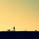 Keep Up Pup! by LittlePhotoHut