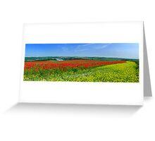 Primary Panorama Greeting Card