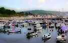 Cobb Quay-Dorset UK by naturelover
