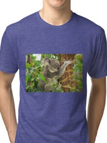 Koala by itself in a tree. Tri-blend T-Shirt