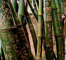 bamboo city by LoveDutchArtEbs