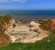 Thornwick Bay by Paul Bettison