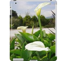 Three Cream Calla Lilies With Garden Background iPad Case/Skin