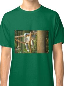 Koala by itself in a tree. Classic T-Shirt