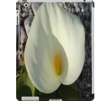 Overhead View of A White Calla Lily Against Pebbles iPad Case/Skin