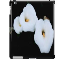 Three Calla Lilies Isolated On A Black Background iPad Case/Skin