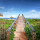 Walkway to the Beach by Susan Zohn