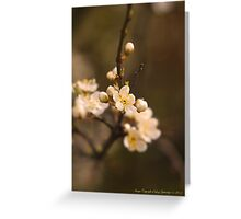 First Blossoms Greeting Card