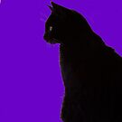 Full Moon Cat by Melba428