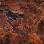 Topography of Rust by Rona Black