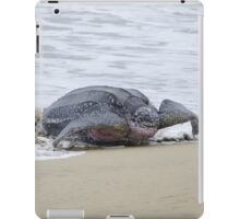 Leatherback Sea Turtle, Grafton, Tobago. 02b iPad Case/Skin