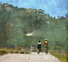 Las bicicletas son para el verano by rentedochan