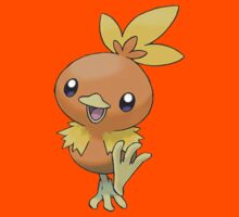 Torchic by Stephen Dwyer