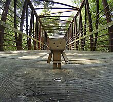 Danbo On The Bridge by withacanon