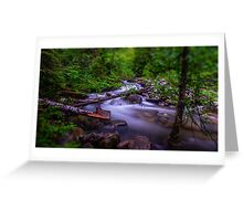 Small Cascade - Forest Service Road 5510 - Washington State - U.S.A. Greeting Card