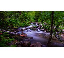 Small Cascade - Forest Service Road 5510 - Washington State - U.S.A. Photographic Print