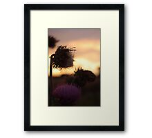 A Purple Sunset Framed Print