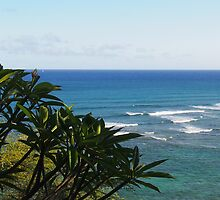 Plumeria: Honolulu, Hawai'i by Sally Kate Yeoman