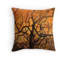 burnt bush looks like burning bush Throw Pillow