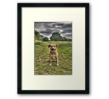 Chloe HDR 001 Framed Print
