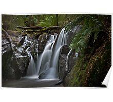 Olinda Falls Mt Dandenong Poster
