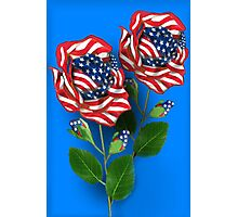 ✰* ★UNITED STATES PATRIOTIC ROSE PICTURE /CARD✰* ★ Photographic Print