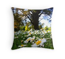 At Johnstown Castle, Wexford Throw Pillow