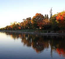 Along the Canal in Fall by MoniqueFlynn