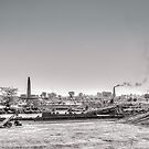 Summer and brick factory by mjamil81