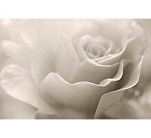 My Love Flows Photographic Print