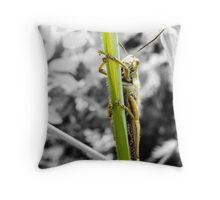 Grillo- insect Throw Pillow