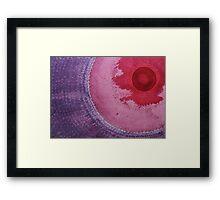 Eye of the Beholder original painting Framed Print