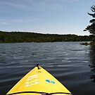 View from My Canoe by identit3a