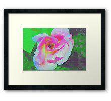 Everyman's rose abstract Framed Print