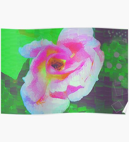 Everyman's rose abstract Poster