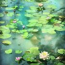 Waterlilies and Frog by Peter Hammer