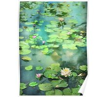 Waterlilies and Frog Poster