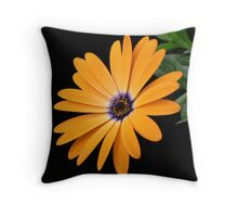 Sun Dial! Throw Pillow