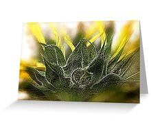 Good Day Sunshine Greeting Card