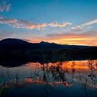 Little Washoe Summer Reflections by Dianne Phelps
