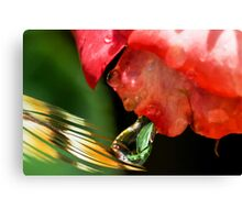 Alien Spitting on a Feather Canvas Print