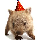 A wombat happy birthday. by Gerry Pearce