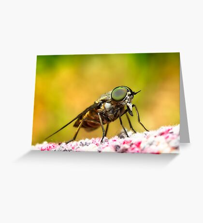 Bad sand fly 01 Greeting Card