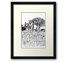 Safari Framed Print