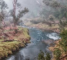 A Misty Morning in Bridgetown, Western Australia #2 by Elaine Teague