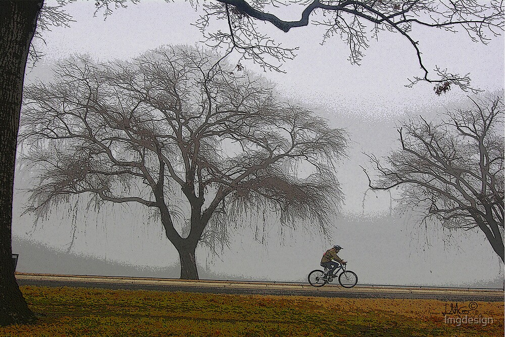 Foggy Cycle by lmgdesign